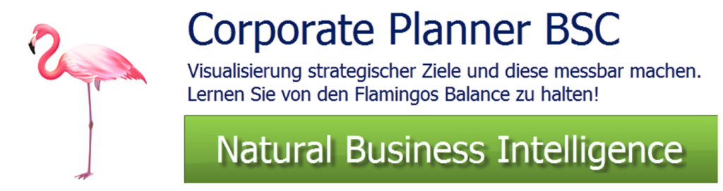 Balanced Scorecard Software CP-BSC