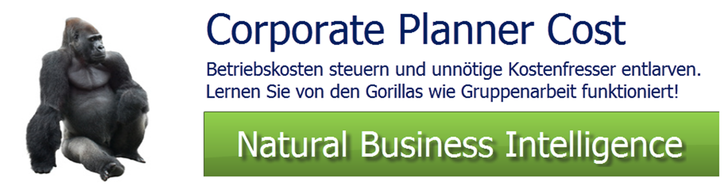 Kostencontrolling Corporate Planner Cost