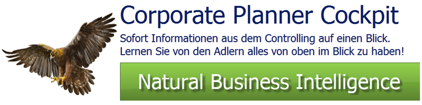 Corporate Planner OC Webseitenanalyse