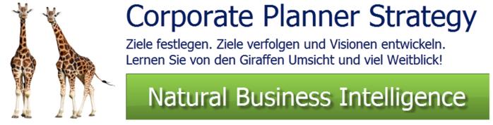 Strategische Planung Portfolioanalysen SWOT Analysen