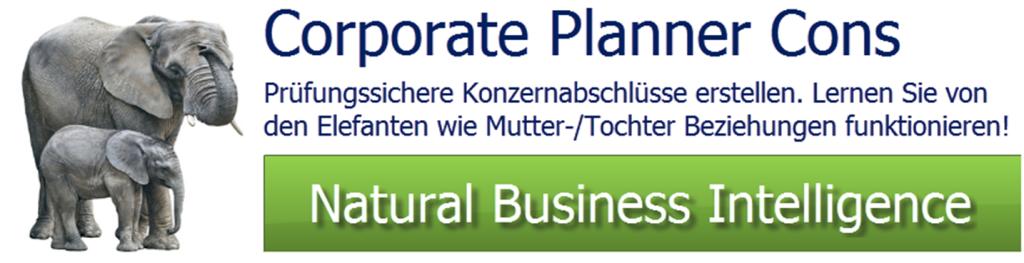 Konzernabschluss Corporate Planner Cons
