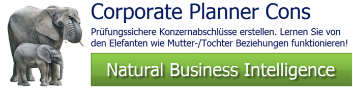 CP Cons - Controlling Software CP-Suite Konsolidierung