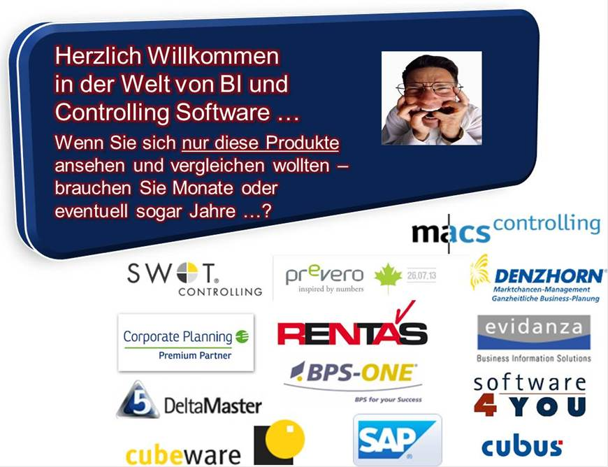 Externe Controlling Software Beratung