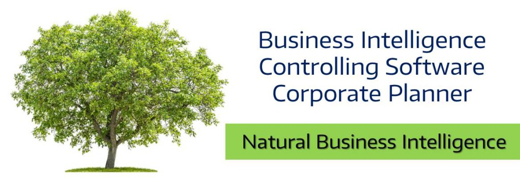 Business Intelligence Controlling Software Corporate Planner