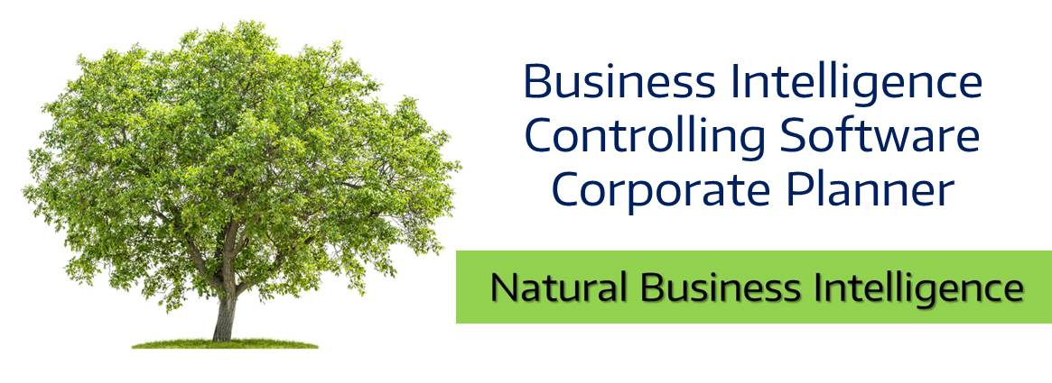 Business Intelligence Controlling Software
